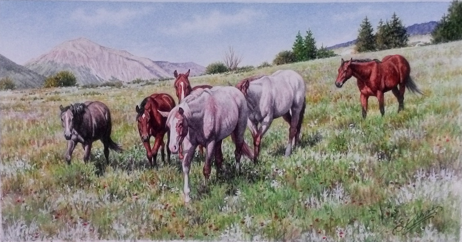 Yearlings - original watercolor by Earl Kuhn